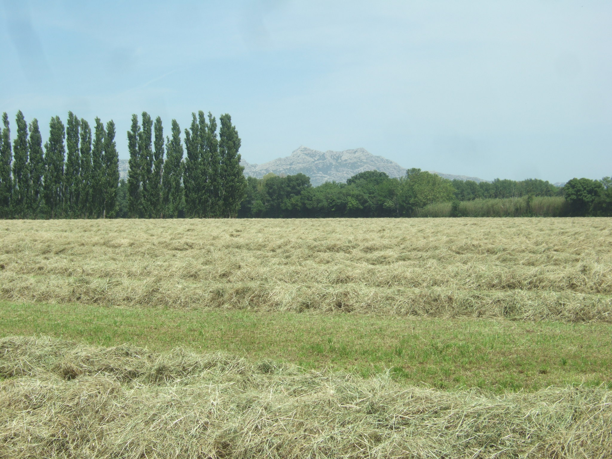 Crau hay compressed in chc bales hay france company this forage has enjoyed an appellation dorigine contrle aoc certification since 1997 which became aop appellation dorigine protge in 2009 xflitez Image collections
