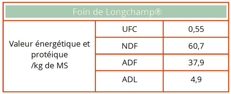Tableau foin de Longchamp chevaux de course et de sport